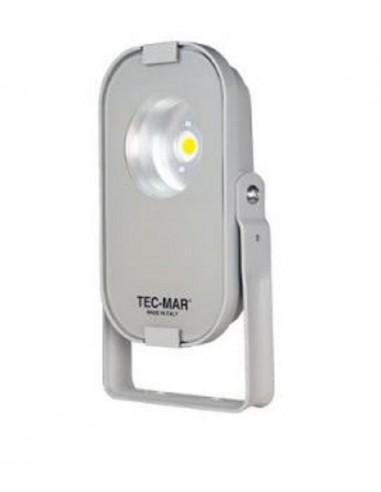 TEC-MAR 8029PR5030GL - proiettore LORDINO 30W 5000K